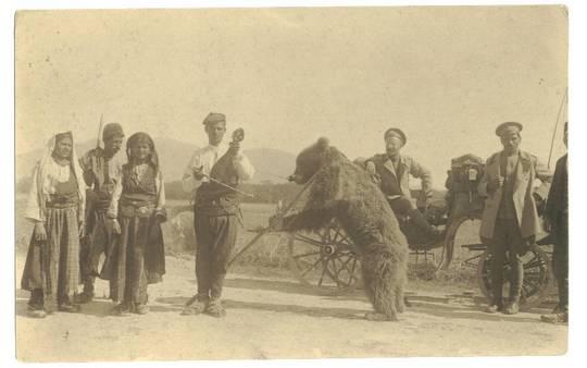 WWI Bulgaria Gypsy Dancing Bear postcard RARE