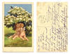 1923 Vintage Kissing cupids artist postcard !