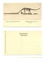 1912 Real Photo Wien Dino Dinosaur postcard R