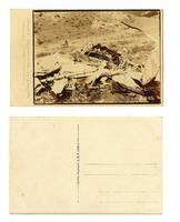 WWI shot airplane dead pilot corps postcard 2