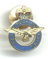 Modern UK Great Britain RAF pilot pin NICE