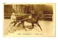 1920 Austria Horse Racing photo postcard NICE